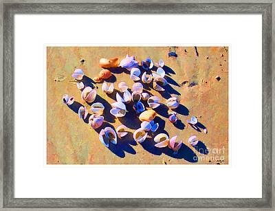 Framed Print featuring the photograph Shell Collection by Roberta Byram