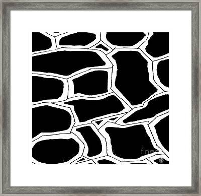 Shell Framed Print