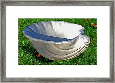 Shell Four Framed Print by Katia Weyher