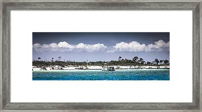 Shell Island Fun  Framed Print by Debra Forand