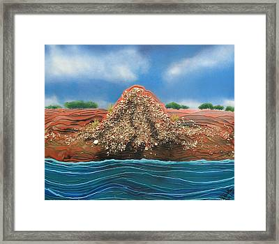 Shell Mound Framed Print