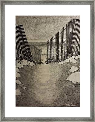 Shell Path Framed Print