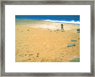 Shell Search Framed Print
