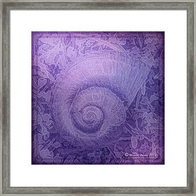 Shell Series 5 Framed Print by Marvin Spates
