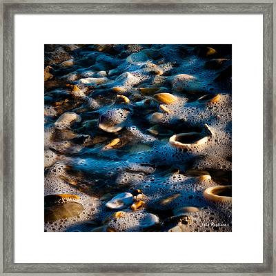 Shell Series No. 7 Framed Print