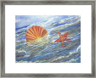 Shell Star  Framed Print