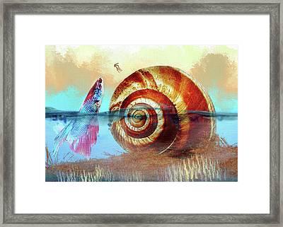 Shell Fish Framed Print