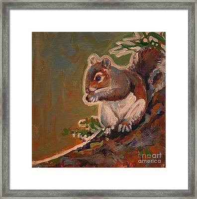 Shelley The Pet Squirrel Framed Print by Michele Hollister - for Nancy Asbell