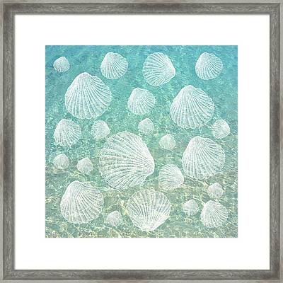 Shells And Clear Water Framed Print