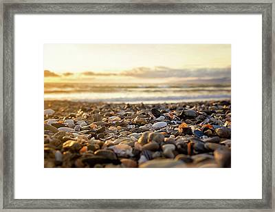 Framed Print featuring the photograph Shells At Sunset by April Reppucci