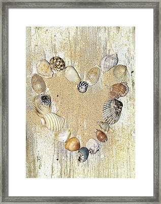 Shells Of The Heart By Kaye Menner Framed Print