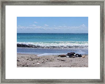 Framed Print featuring the photograph Shells On The Beach by Sandi OReilly