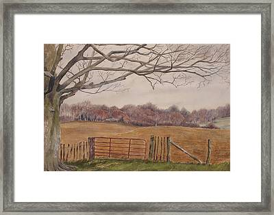 Shelter Framed Print by Debbie Homewood