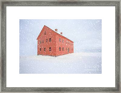 Shelter From The Storm Framed Print by Edward Fielding