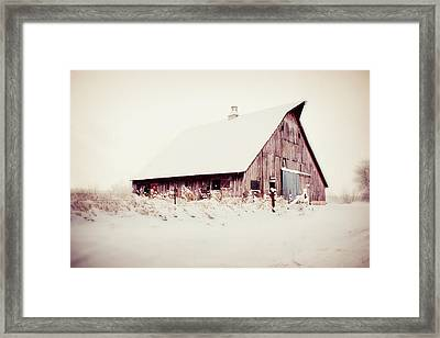 Shelter From The Storm Framed Print by Julie Hamilton