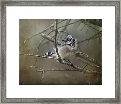 Shelter From The Wind Framed Print