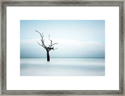 Shelter Framed Print by Ivo Kerssemakers