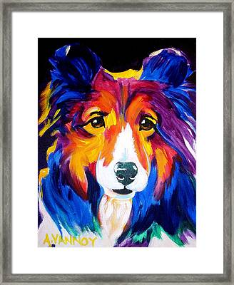 Sheltie - Missy Framed Print by Alicia VanNoy Call