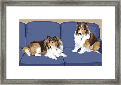 Sheltie Chic Framed Print by Kris Hackleman