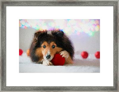 Sheltie With A Red Ball - Painted Framed Print by Ericamaxine Price