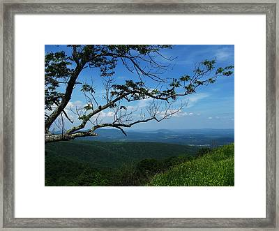 Shenandoah Beauty Framed Print by Joyce Kimble Smith