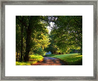 Shenandoah Summer Framed Print by Joyce Kimble Smith