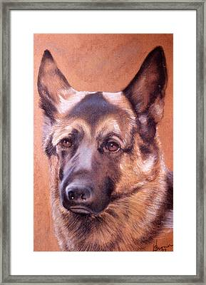 Framed Print featuring the pastel Shepard by Harvie Brown