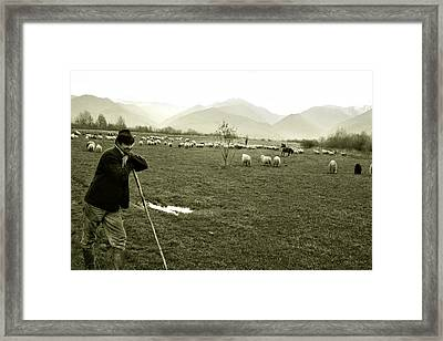 Shepherd In The Carpathians Mountains Framed Print