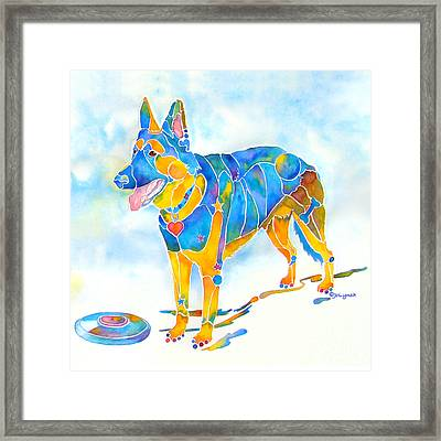 Shepherd With Frisbee - Play With Me Framed Print by Jo Lynch