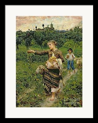Pastoral Vineyards Framed Prints