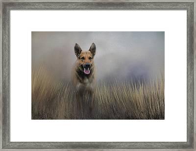 Shepherds Journey Framed Print