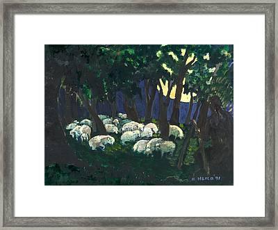 Shepherds Watch Framed Print