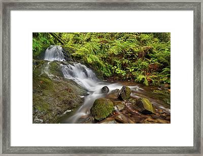 Shepperd's Dell Falls Framed Print by David Gn
