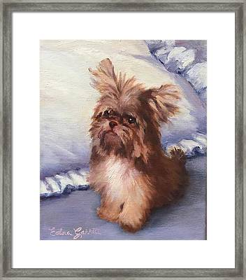 Sherry's Coco Framed Print