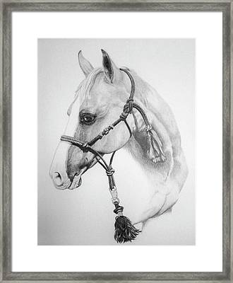 Shes The Gentle One Framed Print by Tracy L Teeter