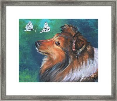Shetland Sheepdog And Butterfly Framed Print by Lee Ann Shepard