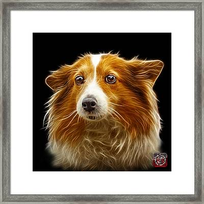 Framed Print featuring the mixed media Shetland Sheepdog Dog Art 9973 - Bb by James Ahn