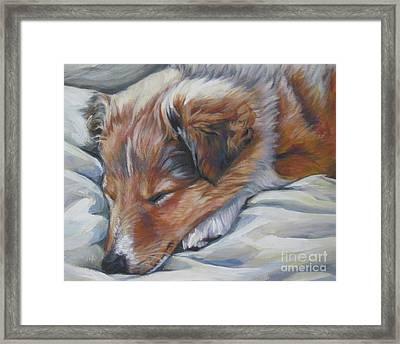 Shetland Sheepdog Sleeping Puppy Framed Print by Lee Ann Shepard