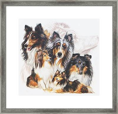 Shetland Sheepdog With Ghost Image Framed Print by Barbara Keith