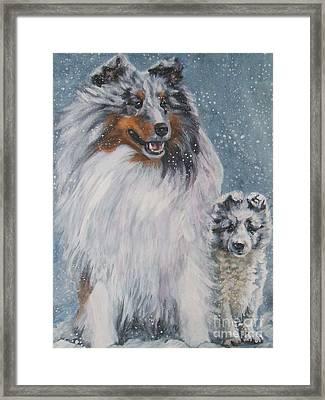 Shetland Sheepdogs In Snow Framed Print by Lee Ann Shepard