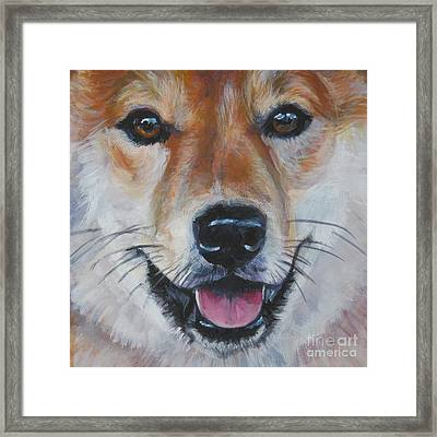 Shiba Inu Smile Framed Print by Lee Ann Shepard