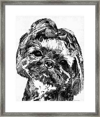 Shih Tzu Dog Art In Black And White By Sharon Cummings Framed Print