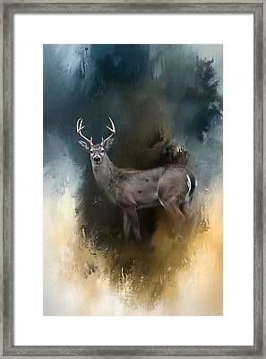 Shiloh Buck Framed Print by Jai Johnson