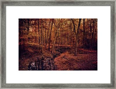 Shiloh Creek 4 Framed Print by Jai Johnson