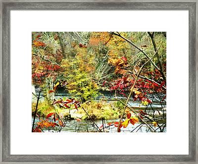 Shimmering Leaves Framed Print by Deb Jazi Raulerson