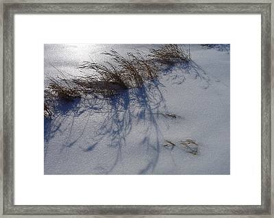 Shimmering Snow Can Only Mean Cold Framed Print by Terrance DePietro