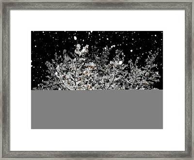 Shimmering Snowfall Framed Print