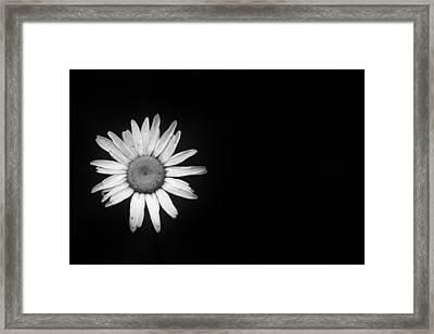 Shine Away Framed Print
