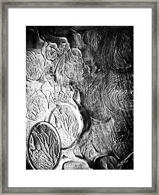 Shine II Framed Print