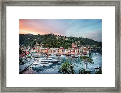 Shine Into The Night Framed Print
